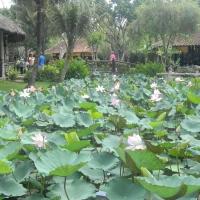gambar-vietnam-054
